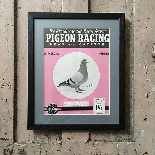 NOW SOLD - Vintage racing pigeon print - 'News Lad'