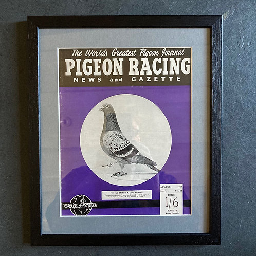 NOW SOLD - Vintage racing pigeon print - 'Champion Geordie' No.5