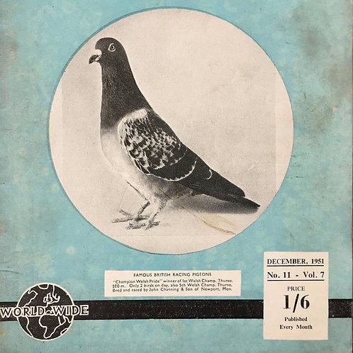 NOW SOLD - Vintage racing pigeon print - No.11 'Champion Welsh Pride'