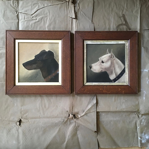 NOW SOLD - Pair of terrier dog paintings