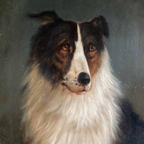 19th C. dog portrait oil painting - 'Black Collie'