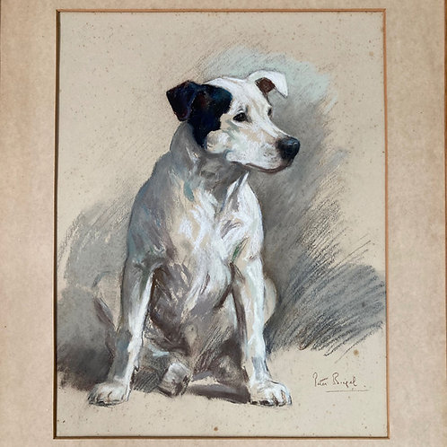 NOW SOLD - Terrier drawing by Peter Biegel