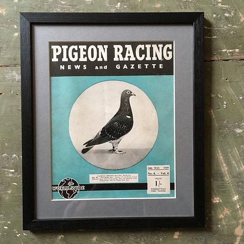 NOW SOLD - Vintage racing pigeon print - No. 39 'The Badge Hen'