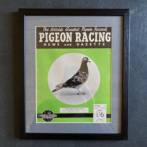 NOW SOLD - Vintage racing pigeon print - 'Nita' No.7
