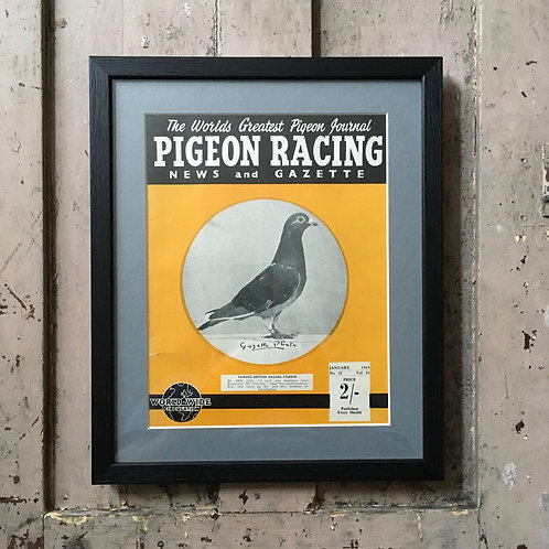 NOW SOLD - Vintage racing pigeon print - 'Hen 2996'