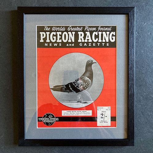 Vintage racing pigeon print - 'Shortie' No.5