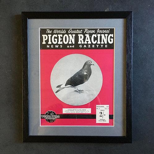 NOW SOLD - Vintage racing pigeon print - 'Faroe Supreme'