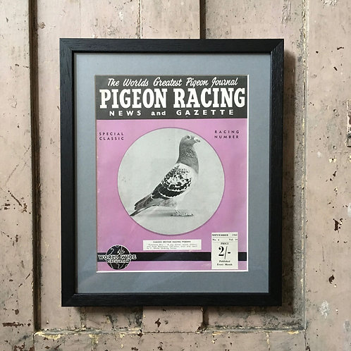 NOW SOLD - Vintage racing pigeon print - 'Barcelona Boy'