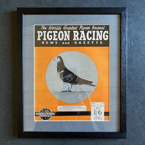 Vintage racing pigeon print - 'Brangreen Lass' No.4