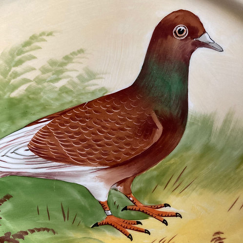 NOW SOLD - Antique racing pigeon plate
