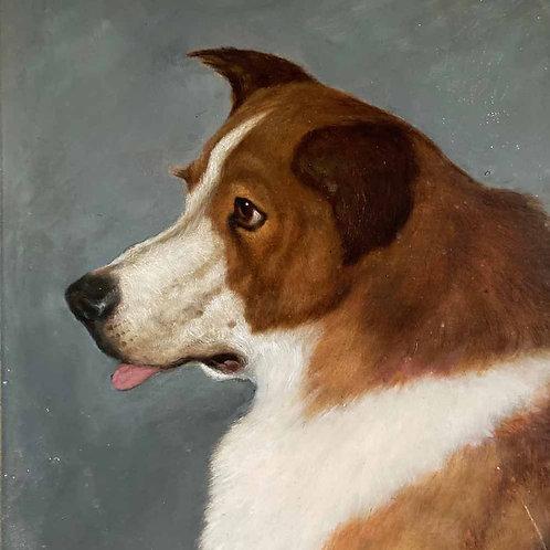19th C. dog portrait oil painting - 'Brown Collie'