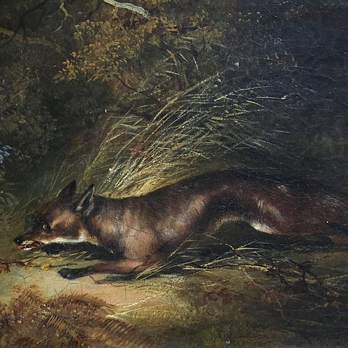 NOW SOLD - 19th century English School oil painting - fox