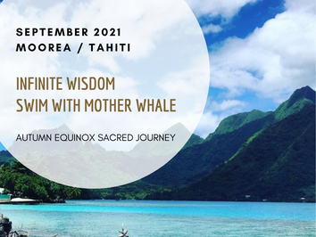 Infinite Wisdom, Swim with Mother Whale ~ Autumn Equinox Sacred Journey to Moorea/Tahiti