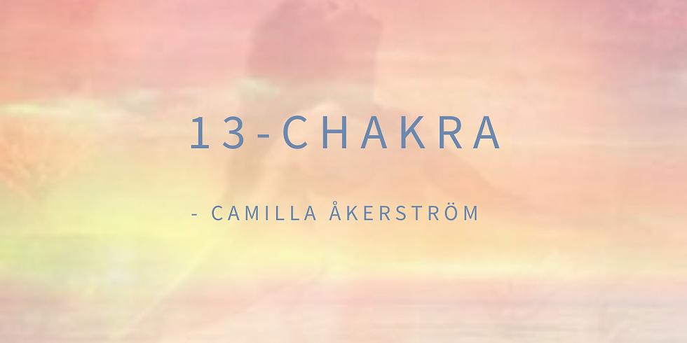 13 - Chakra
