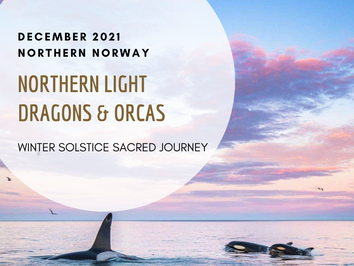 Northern Light Dragon & Orcas  ~ Winter Solstice sacred journey, Northern Norway