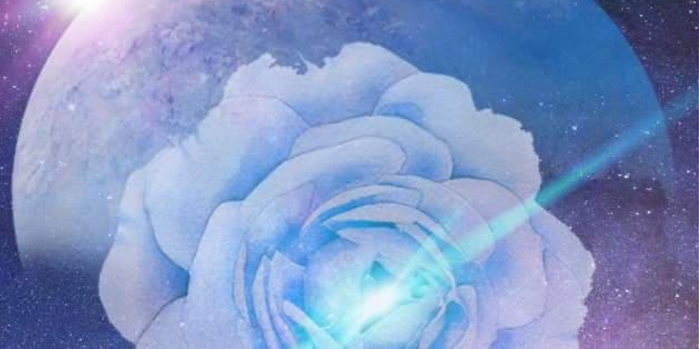 Offer 3 - 12 Activations Collection + 7-week online course + Higher Healing Session