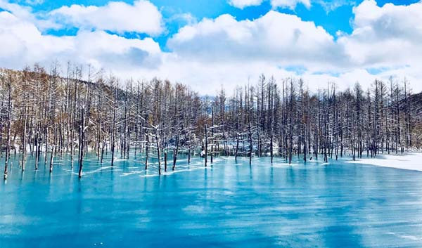 Blue pond4 (2).jpg