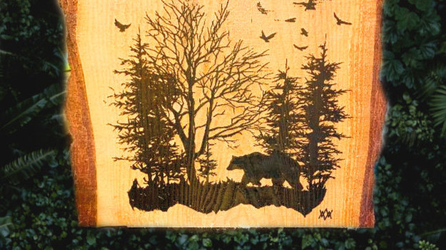 Wood slice Bear decor Camp Sign