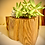 Thumbnail: Natural wood planter with life plant included