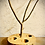 Thumbnail: Nature made jewerly holder and ring hole