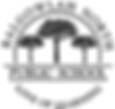 BNPS logo.png