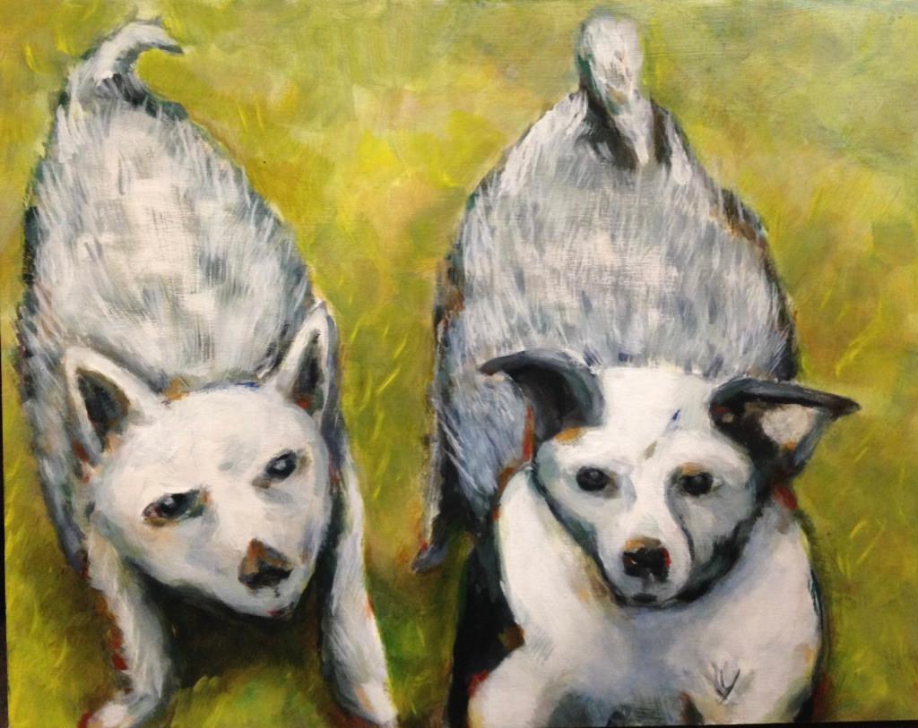 Wild Dogs of Seward Park