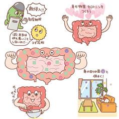 宝島社「腸をきたえてアレルギーを治す」