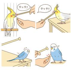 blury-preloadresized-preload東京書店「鳥ぐらし」 blury-preloadresized-preloadブリヂストン「健保だより」 東京書店「鳥ぐらし」