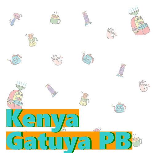 Kenya Gatuya PB