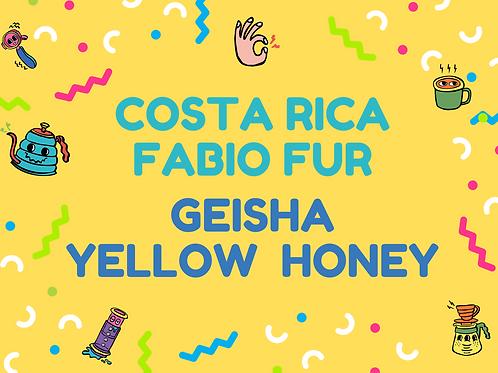 Costa Rica Fabio Fur Geisha