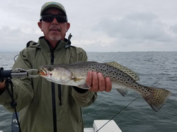 Chesapeake Bay Fly Fishing and Light Tackle Guide