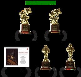 新能源獎項0219.png