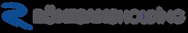 Ronesans holding logo