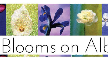 Art Blooms on Albion