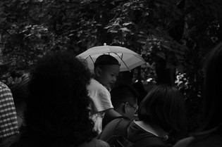 Umbrella 45.JPG