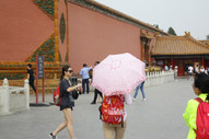 Umbrella 62.JPG