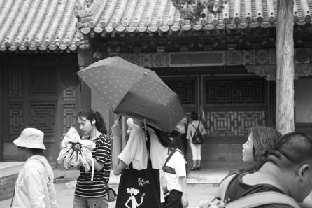 Umbrella 51.JPG