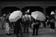 Umbrella 42.JPG