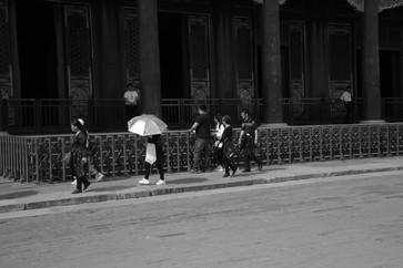 Umbrella 19.JPG