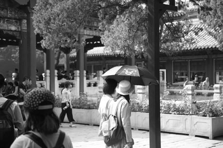 Umbrella 47.JPG