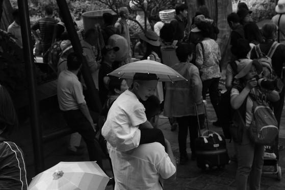 Umbrella 46.JPG