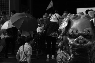 Umbrella 29.JPG