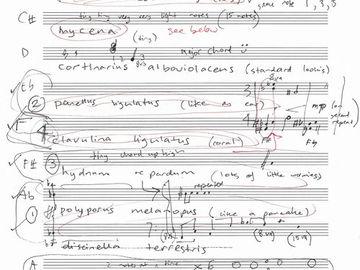 Elizabeth Jigalin - Fungi Music.jpg
