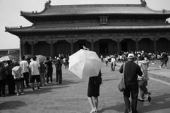 Umbrella 22.JPG