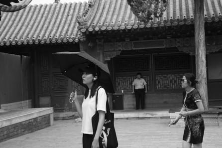 Umbrella 50.JPG