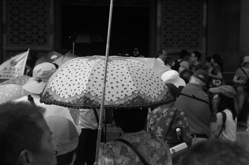 Umbrella 41.JPG