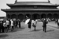 Umbrella 24.JPG
