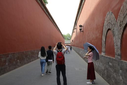 Umbrella 6a.JPG