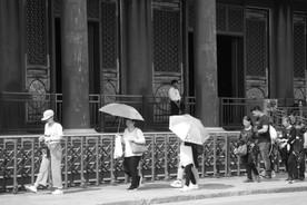 Umbrella 17.JPG