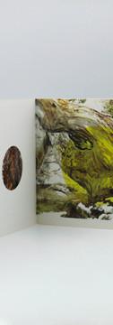 Eucalyptus Book IMage 2.jpg